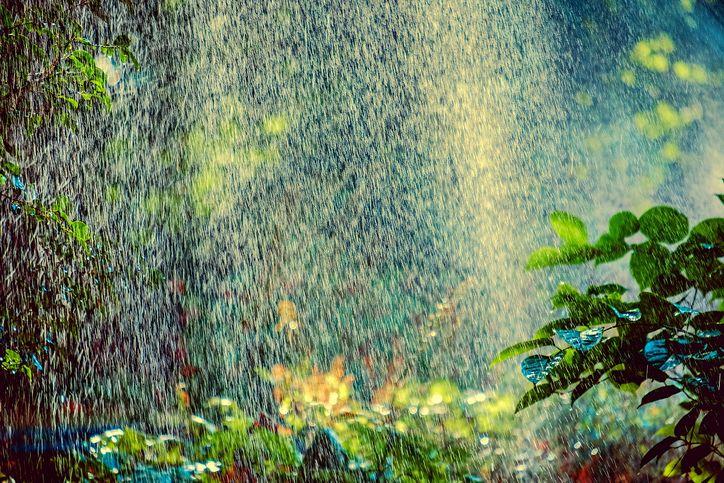 Automatische Bewässerung im eigenen Garten oder auf der Dachterrasse