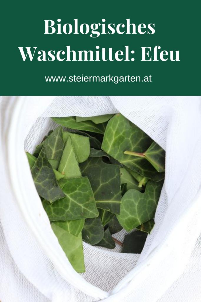 Biologisches-Waschmittel-Efeu-Pin-Steiermarkgarten