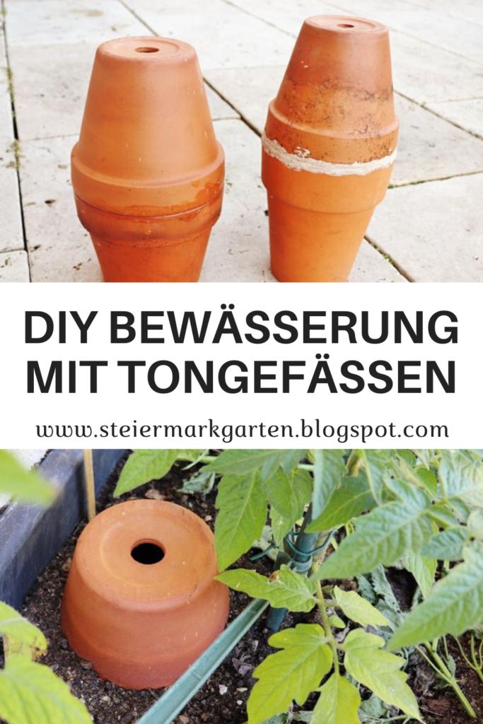 DIY-Bewaesserung-mit-Tongefaessen-Pin-Steiermarkgarten