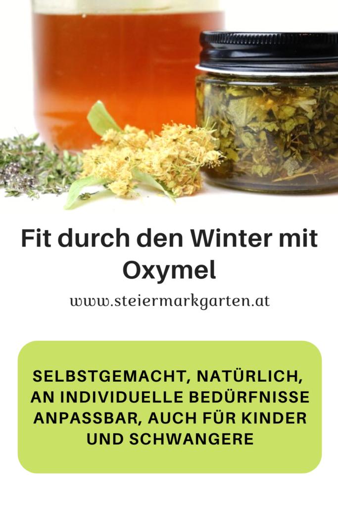 Fit-durch-den-Winter-mit-Oxymel-Pin-Steiermarkgarten