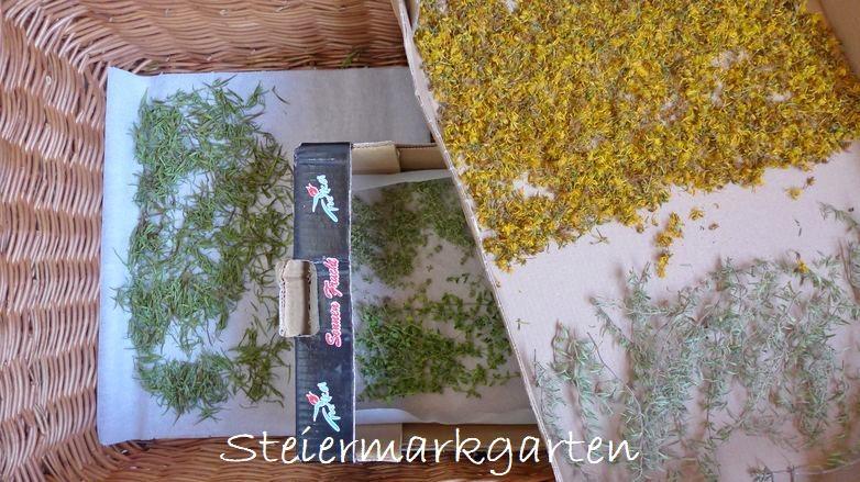 Kräuter-natürlich-trocknen-in-Schachteln-Steiermarkgarten