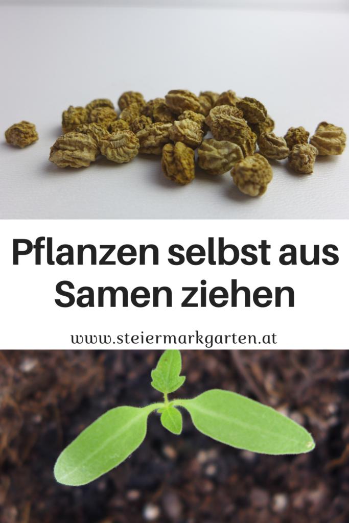 Pflanzen-selbst-aus-Samen-ziehen-Pin-Steiermarkgarten