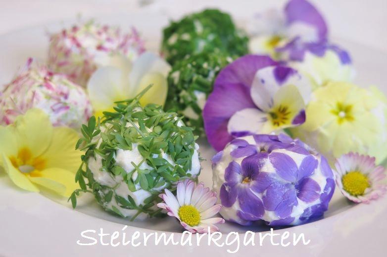 Blüten-Topfenbällchen-Rezept-Steiermarkgarten