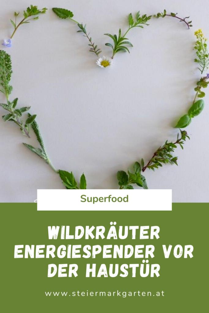 Wildkraeuter-Powerfood-Pin-Steiermarkgarten