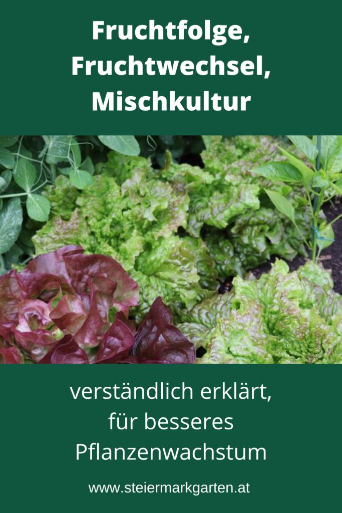 Fruchtfolge-Fruchtwechsel-Mischkultur-Pin-Steiermarkgarten