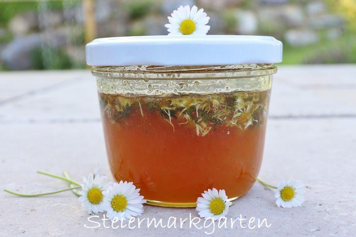 Gänseblümchen-Honig-selbstgemacht-Steiermarkgarten