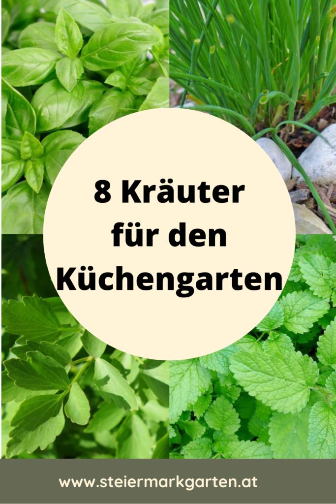 Kraeuter-fuer-den-Kuechengarten-Pin-Steiermarkgarten