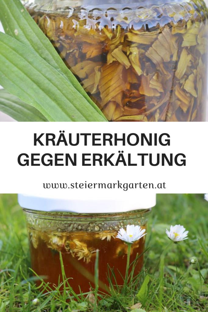 Kraeuterhonig-gegen-Erkaeltung-Pin-Steiermarkgarten