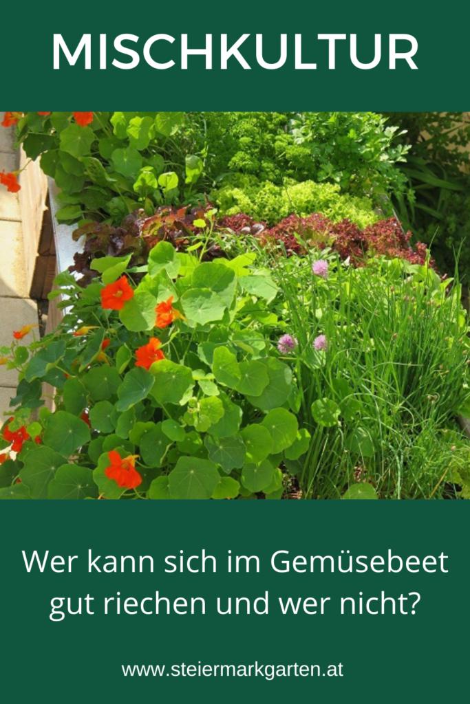 Mischkultur-Pin-Steiermarkgarten