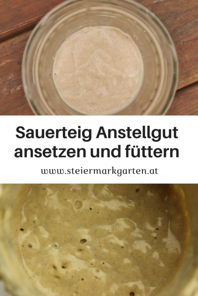 Sauerteig-Anstellgut-ansetzen-fuettern-Pin-Steiermarkgarten
