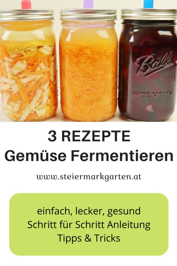 3 Rezepte Gemüse fermentieren Pin