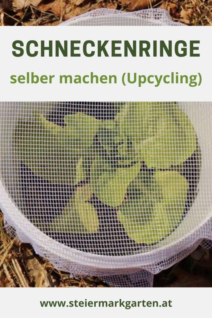 Schneckenringe-selber-machen-zero-waste-Upcycling-Pin-Steiermarkgarten